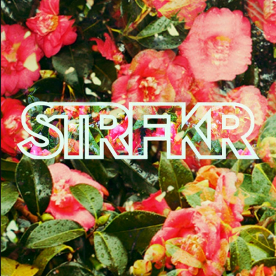 STRFKR and Reptaliens at Music Farm