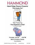 Hawk Ridge Camp Theater Performances