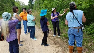 Guided Walking Tour - Natural History