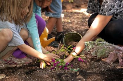 Family Gardening Workshop | Bulbs