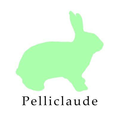 Pelliclaude