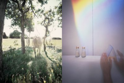Insecure Images: Pinhole Photography and the Camera Obscura