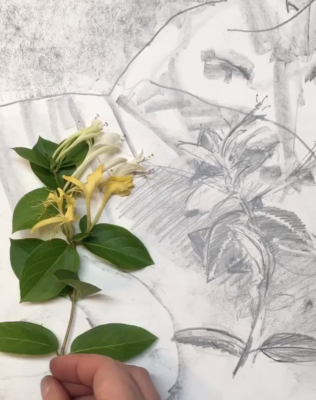 UofSC Professors' Timelapse Drawing Videos