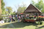 The 9th Annual Lexington Herb Festival on April 10th, 2021