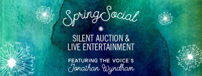 Leadership South Carolina Spring Social and Silent Auction