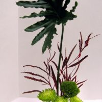 Ikebana Demonstration and Sale