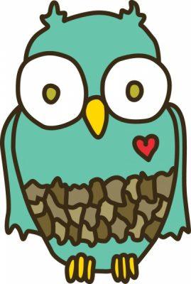 Owlette: Beginner Plus 102 – Make a Zipper Bag!