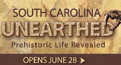 South Carolina Unearthed
